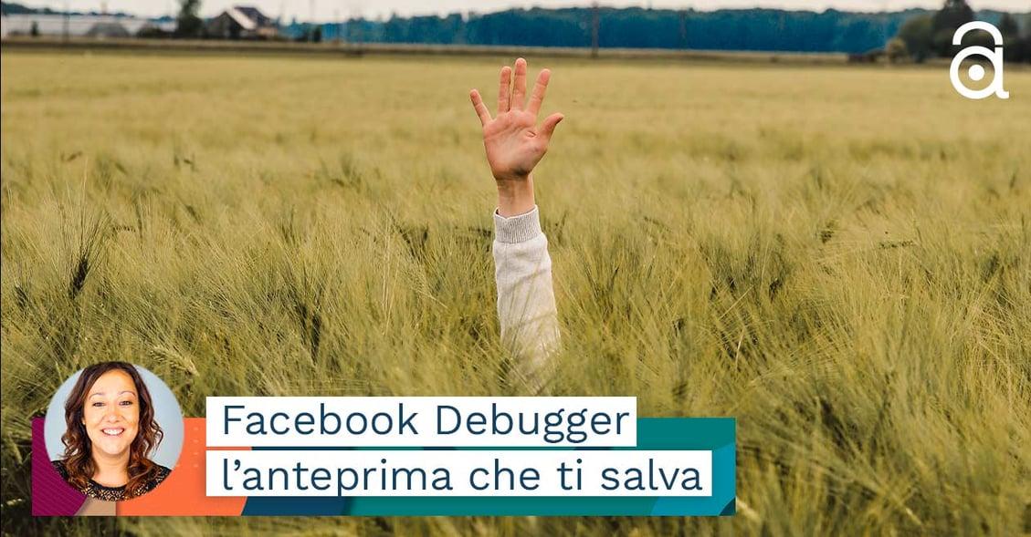 Debugging Facebook come farlo e quando va fatto assolutamente
